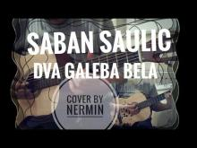 Embedded thumbnail for Saban Saulic - Dva galeba bela - cover